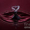 Rubies And Diamonds by Susan Candelario