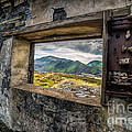 Ruin With A View  by Adrian Evans