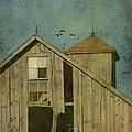 Rural Iowa Barn 5 by Cassie Peters