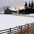 Rural Winter Landscape by Elena Elisseeva