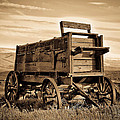 Rustic Covered Wagon by Athena Mckinzie