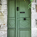 Rustic Green Door With Vines by Georgia Fowler