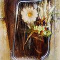 Rustic Romance by La Rae  Roberts