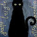 Sad And Ruffled Cat by Donatella Muggianu