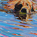 Sadie Has A Ball by Molly Poole