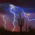 Saguaro Lightning Nature Fine Art Photograph by James BO  Insogna