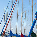 Sailboat Masts by Artist and Photographer Laura Wrede