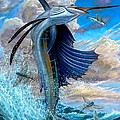 Sailfish And Flying Fish by Terry Fox