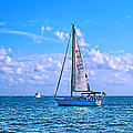 Sailing Off Of Key Largo by Chris Thaxter
