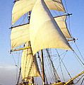 Sailing Ship Carribean by Douglas Barnett