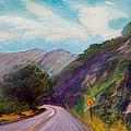Saint Vrain Canyon by Athena  Mantle