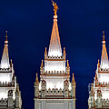 Salt Lake Lds Mormon Temple At Night by Gary Whitton