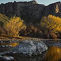 Salt River Fall Foliage by Dave Dilli