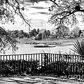 Sampit River View Print by John Rizzuto