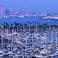 San Diego Twilight by Sandra Bronstein