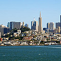 San Francisco Skyline by Kelley King
