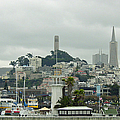 San Francisco View From Fishermans Wharf by Suzanne Gaff