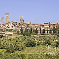 San Gimignano with v...