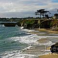 Santa Cruz Beach by Carol Groenen