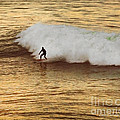 Santa Cruz Surfing At The Golden Hour by Artist and Photographer Laura Wrede