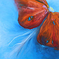 Schmetterlingsblume Print by Karen  Kreuzer