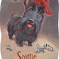 Scottie's Beaming by Shawn Shea