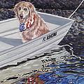 Seadog by Danielle  Perry