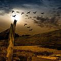 Seasons Of Change by Bob Orsillo