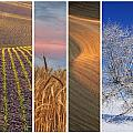 Seasons Of The Palouse by Latah Trail Foundation