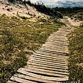 Secret Path by Gerlinde Keating - Galleria GK Keating Associates Inc