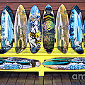 Sector Nine Skateboards by Cheryl Young