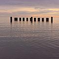 Sentinels by Adam Romanowicz