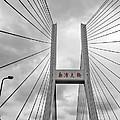 Shanghai Bridge by Matthew Bamberg