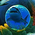 Shark World  by Robin Moline