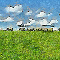 Sheep Herd by Ayse Deniz