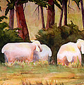 Sheep In The Meadow by Blenda Studio