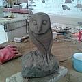 Sheffield Owl by Stephen Nicholson