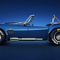 Shelby Cobra 427 - Water Snake Print by Marc Orphanos