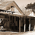 Shelby Store - 2012 Vintage Texas Sepia