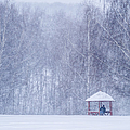 Shelter In The Storm - Featured 3 by Alexander Senin