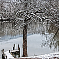 Shenandoah Winter Serenity by Lara Ellis