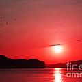 Shepherd's Delight Sunset by Kaye Menner