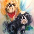 Shih Tsu Siblings by Alan Goldbarg