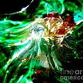 Shining Through the Glass II Print by Kitrina Arbuckle