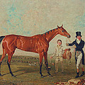 Shoveller Held By Her Trainer Will Chifney by Benjamin Marshall