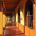 Sidewalk In Tlaquepaque District Of Guadalajara by Elena Elisseeva