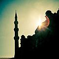 Silhouettes Of Blue Mosque Istambul Turkey by Raimond Klavins