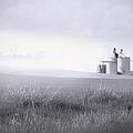 Silo Mist by Melisa Meyers