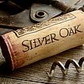 Silver On Silver by Jon Neidert