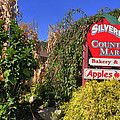 Silverman's Country Farm by Joann Vitali